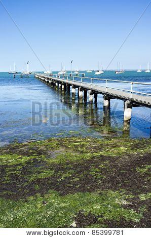 Old Wooden Pier Geelong Australia. Sunny Summer Afternoon