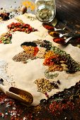 pic of kindness  - Map of world made from different kinds of spices - JPG