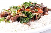 picture of flank steak  - home made beef stir fry with flank steak fresh vegetables and cilantro - JPG