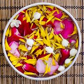 picture of jasmine  - Water with jasmine and roses corolla in bowl - JPG