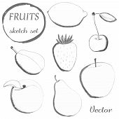 image of freehand drawing  - Set of fruits in sketch style on white background - JPG