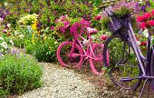 picture of garden-art  - Whimsical garden art bicycles baskets filled with blooming flowers spilling over into the blooming garden - JPG