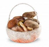 image of fungus  - Boletus edulis and White fungus in the basket on white background - JPG