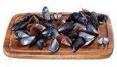 foto of mollusca  - Shells of mussels on wooden board - JPG