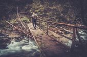 picture of pole  - Hiker with hiking poles  walking over wooden bridge in a forest  - JPG