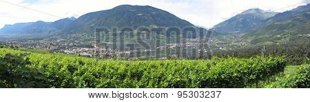 Landscape Of South Tyrol With Traditional Cultivated Lands