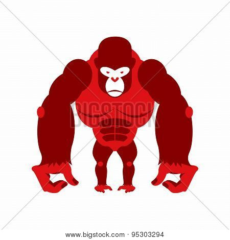 Gorilla big and scary. Strong red Angry monkey. Vector illustration animal on a white background.