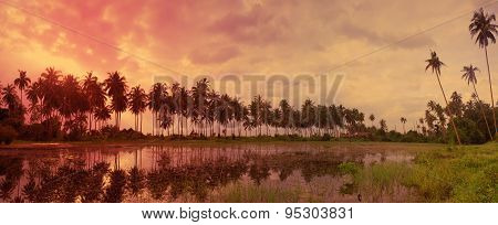 Colorful Tropical Landscape With Twilight Sky And Palm Trees Reflected In Water. Picturesque Romanti