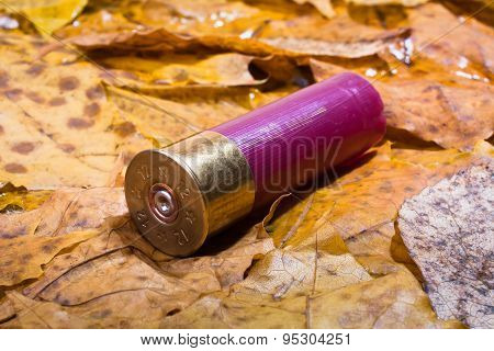 Shotgun Shell That Has Been Used On The Ground
