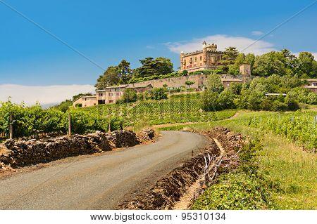 Montmelas Castle And Vineyards
