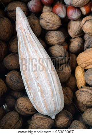 Cocoa Fruit and Nuts