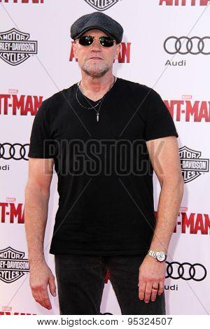 vLOS ANGELES - JUN 29:  Michael Rooker at the