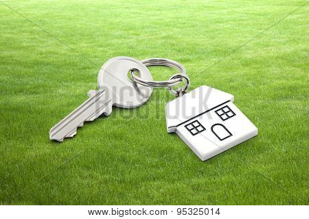 House key on grass background