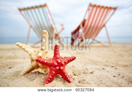 Two sea stars on sandy beach with sunbathers on background