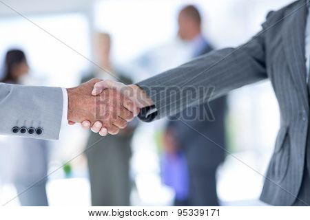 Businessman shaking hands with a co worker in an office