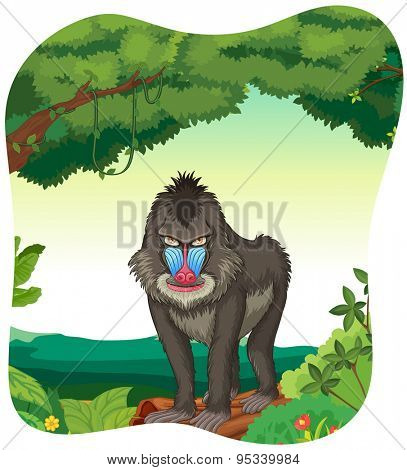 Poster of a baboon standing on a log under a tree