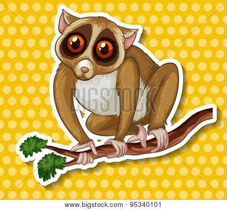 Sticker of a slow loris sitting on a branch of a tree