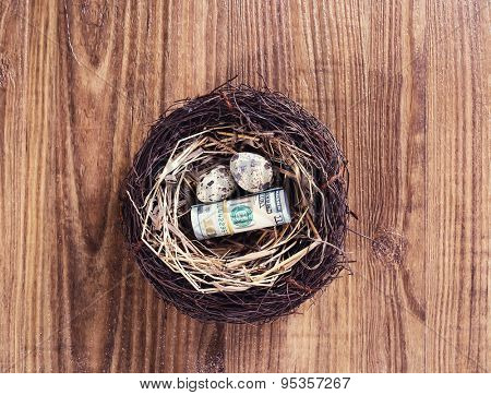 Dollar bills and egg in a birds nest on wooden background