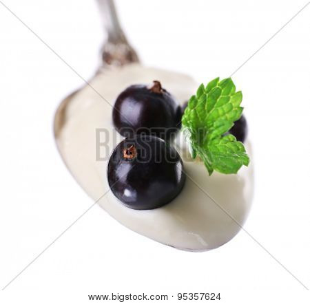 Delicious yogurt in spoon with blackcurrants and mint isolated on white
