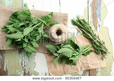 Leaves of lemon balm and rosemary sprigs with rope on sackcloth, closeup