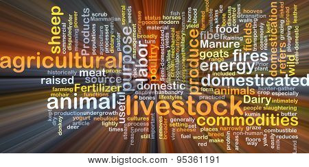 Background concept wordcloud illustration of livestock glowing light