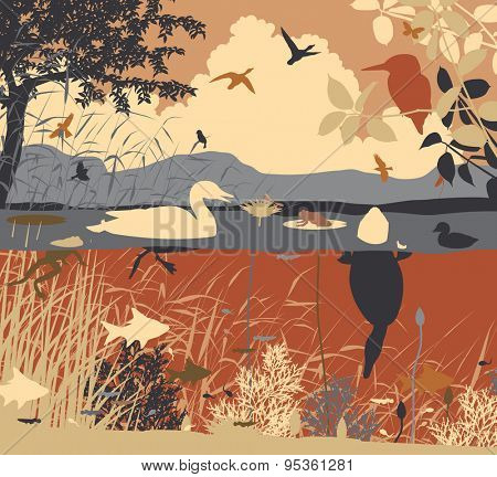Illustration of diverse wildlife in a freshwater ecosystem