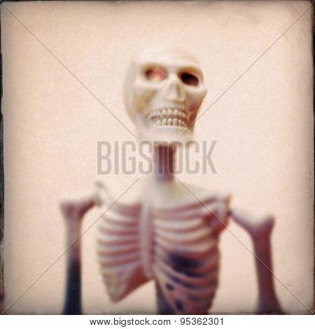 Instagram filtered image of a plastic Halloween skeleton