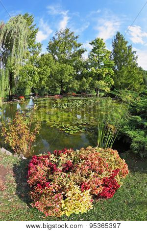 The famous Garden Park Sigurta in Italy. A colorful fllowers and shrubs with red, yellow and green leaves