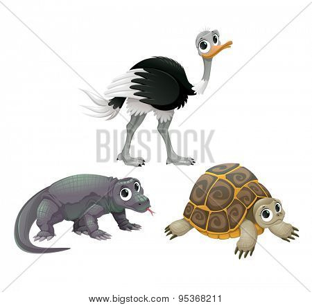 Funny Australian animals, ostrich, turtle and Komodo dragon. Vector cartoon isolated characters.