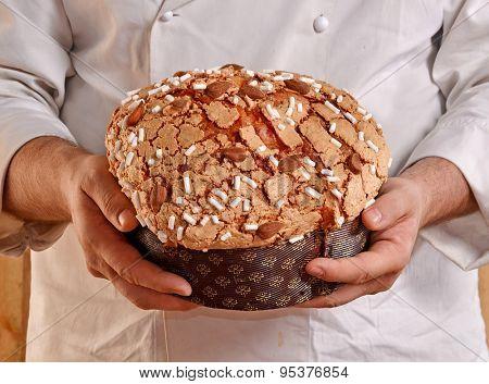 Baker holding panettone bread.