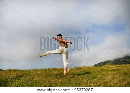 male model with muscles in exercise jumping outdoors. over mountain grass