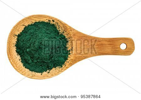 Nutrient-rich organic chlorella powder on a wooden spoon, isolated on white, top view