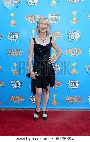 BURBANK - JUNE 25: Lin Shaye arrives at the 41st Annual Saturn Awards on Thursday, June 25, 2015 at the Castaway Restaurant in Burbank, CA.