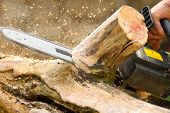 stock photo of man chainsaw  - the photo of the woodworking with chainsaw lumberjack at work - JPG