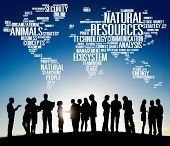 picture of nature conservation  - Natural Resources Conservation Environmental Ecology Concept - JPG