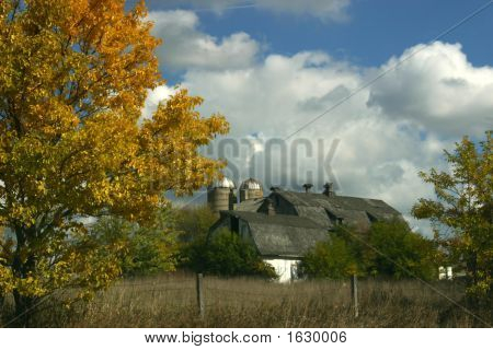 Fall Landscape With Barn