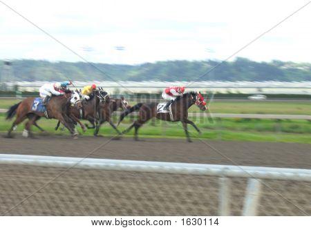 Horse Track Thunder