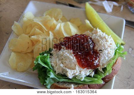 Open faced chicken salad sandwich with fresh cranberry jam on top and a handful of crispy potato chips.