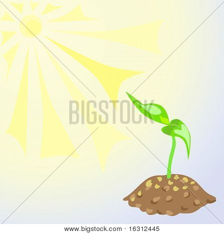 Vector Green Sprouts In The Land