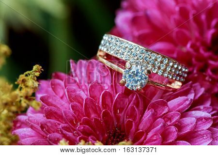 Rings Pink Dahlias Love Valentine's Day Tinted  And Softened - Diamond Wedding