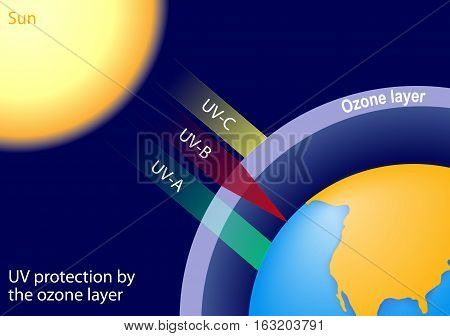 UV protection by the ozone layer. UV-C is entirely screened out UV-B radiation is partially absorbed UV-A are not strongly absorbed by the ozone layer and most of this radiation reaches the surface the Earth.