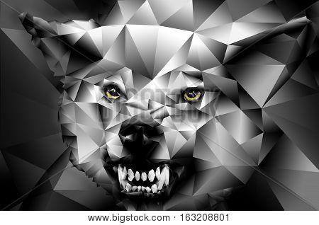 Wolf polygon geometric illustration. Wolf with yellow eyes growls.