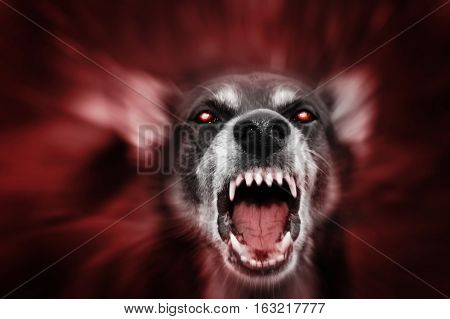 Red glowing eyed dog-like aggressive demonic attacking beast incarnation of evil fear and hereafter.