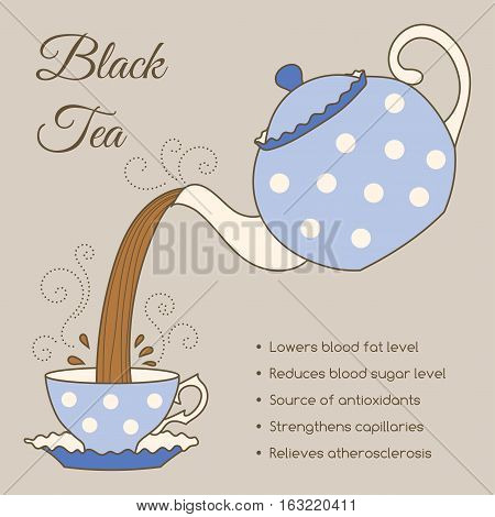 Tea properties and health benefits. Hand drawn vector illustration