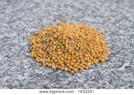 Mustard Seeds On Granite Worktop