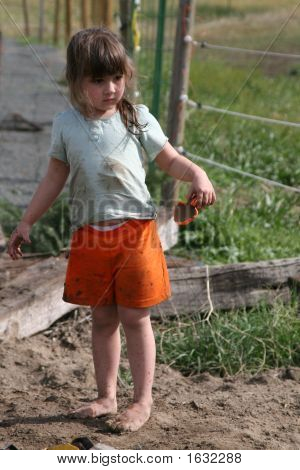 Dirt And Mud