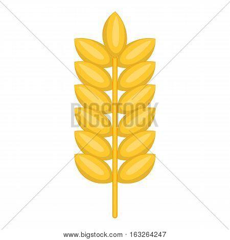 Ear of wheat icon. Cartoon illustration ear of wheat vector icon for web design
