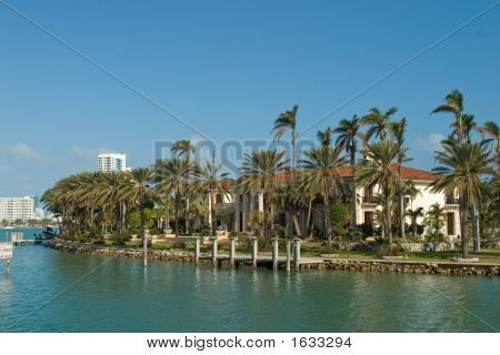 Mansion With Palms From The Side