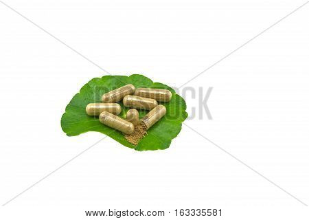 Green Asiatic Pennywort (Centella asiatica ) and yellow pill capsules on white background.Saved with clipping path.