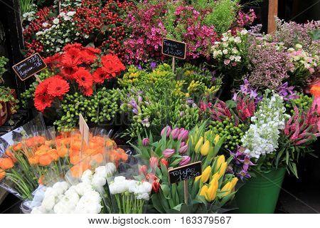 Flower bouquets in buckets of water outside floral shop